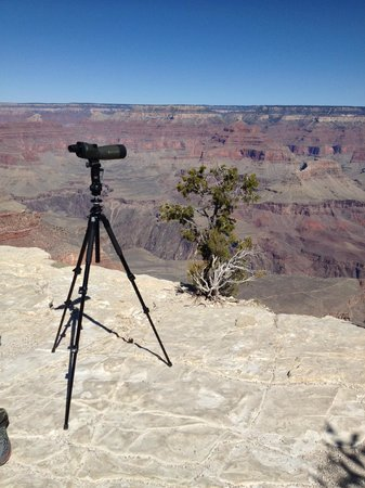 All-Star Grand Canyon Tours: Best visuals offered too!!