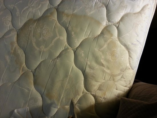 Holiday Inn Express & Suites Lexington NW-The Vineyard: stained mattress