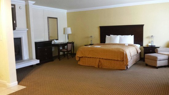 Stargazer Inn and Suites: Large room