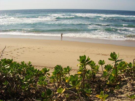 Thonga Beach Lodge: Was für ein Strand