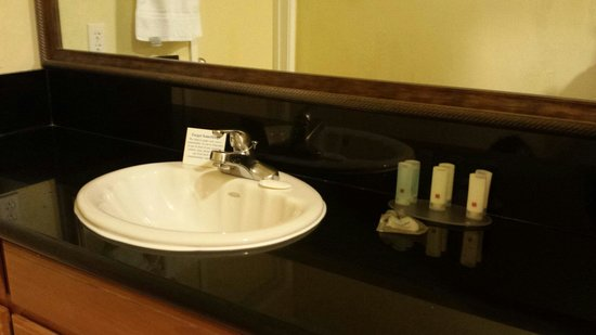 Stargazer Inn and Suites: Large vanity area