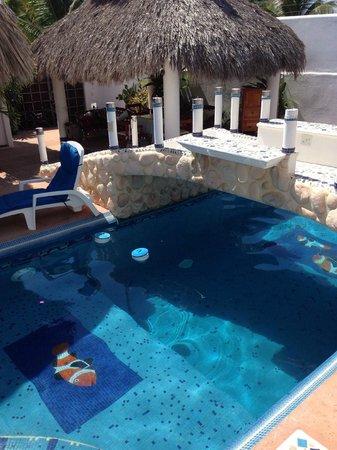 Quinta Lili : Pool area