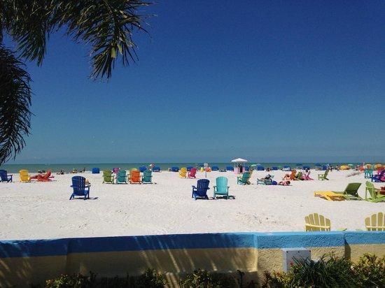 Plaza Beach Hotel - Beachfront Resort : Chairs on the beach