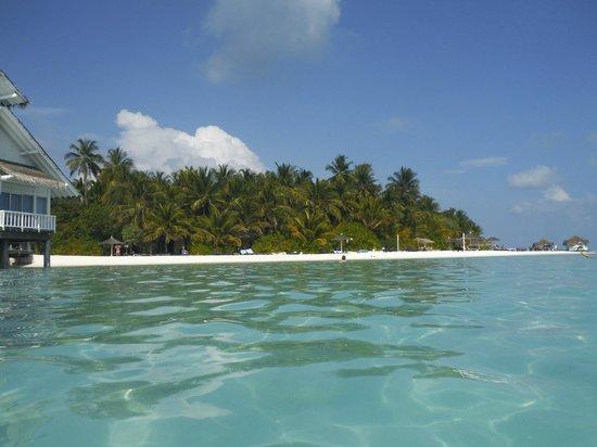 Ellaidhoo Maldives by Cinnamon : island