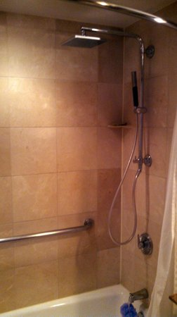 The Westin Riverwalk, San Antonio: Shower
