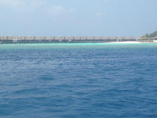 Dusit Thani Maldives: Water Villas