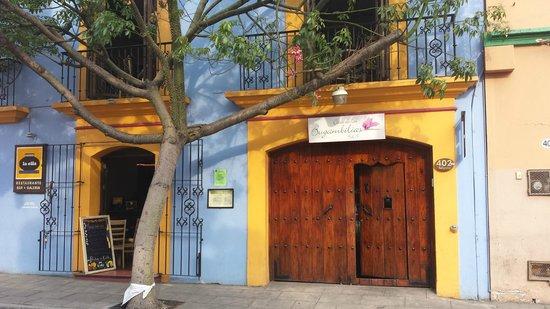 Casa de Las Bugambilias B&B: Front entrance from street