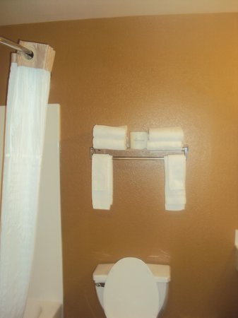 Extended Stay America - Mt. Olive - Budd Lake : Provided Towels and Cloths