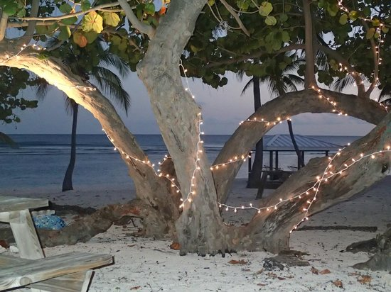 Cayman Brac Beach Resort: Dinner on the Beach
