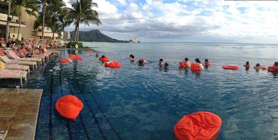 Sheraton Waikiki : Pool