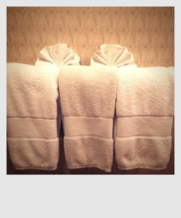 Embassy Suites by Hilton Chicago - O'Hare/Rosemont: Towels