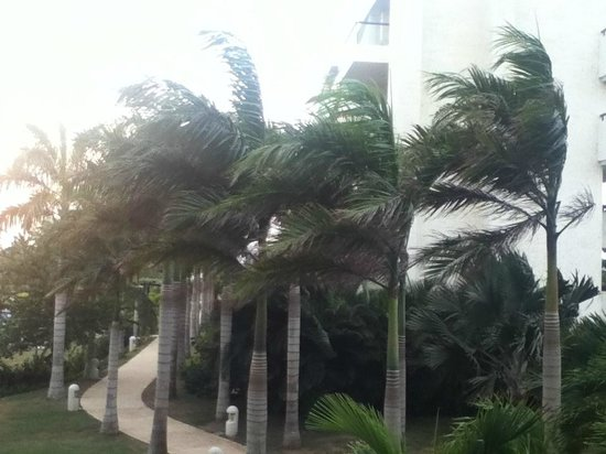 Occidental Grand Cartagena Resort : Windy in Cartagena, Colombia
