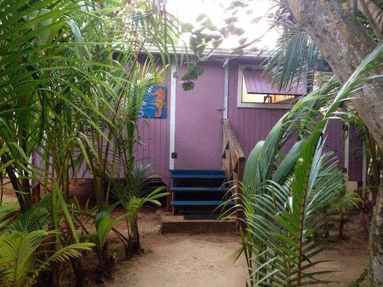 Casa Iguana: Casita 5
