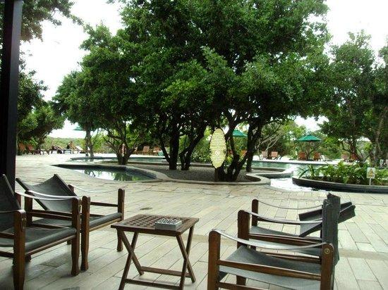 Cinnamon Wild Yala : Pool area