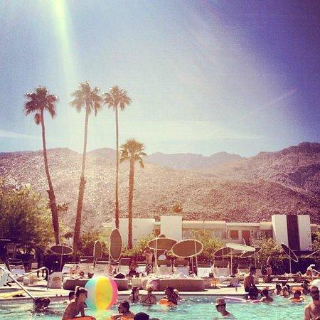 Ace Hotel and Swim Club: poolside
