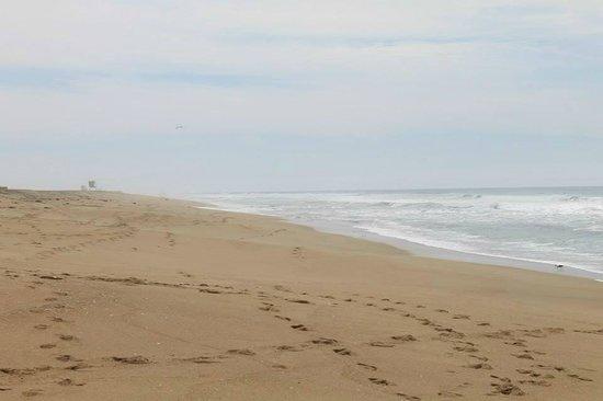 Orange County Coast: Quiet early morning at Bolsa Chica