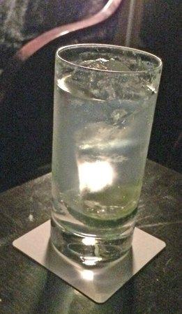 Majestic Shiodome: SHIODOME Gin Tonic