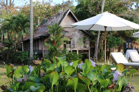 Bon Ton Resort : White Frangipani