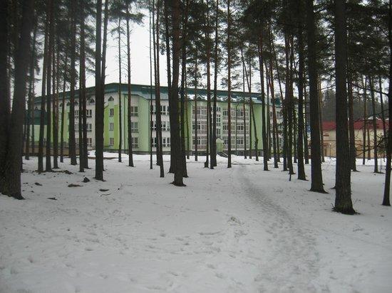 Health resort white russia belarusia