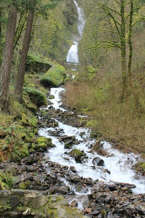 Columbia River Gorge National Scenic Area: Wahkeena Falls - Along the highway