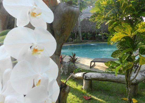 Natura Cabana Boutique Hotel & SPA: Beautifully kept grounds