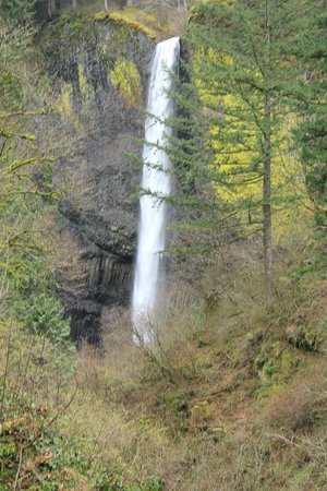 Columbia River Gorge National Scenic Area: Latourell Falls - Along the highway