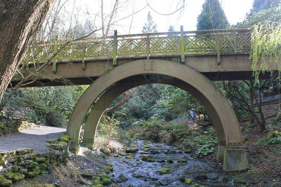 Crystal Springs Rhododendron Garden : Bridge