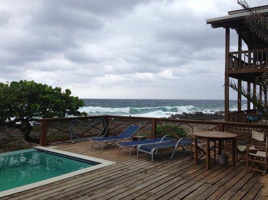 Cocolobo: The pool
