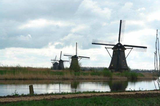 Réseau de moulins de Kinderdijk-Elshout : Ветряные мельницы в районе Киндердейк-Элсхаут
