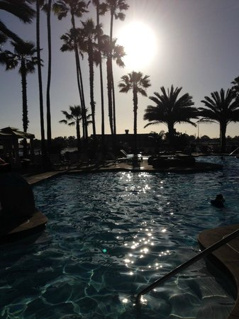 Hilton San Diego Resort & Spa : view of the pool at sunset plus their are two hot tubs !!