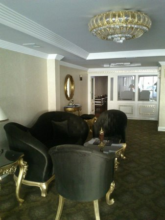 Ankara Gold Hotel: hall