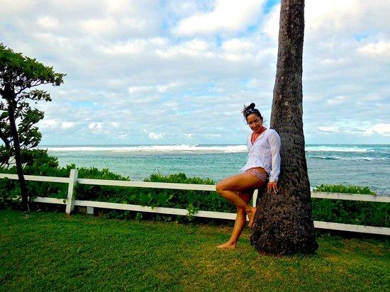 Hanalei Colony Resort : Beautiful view