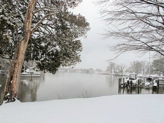 Bay Cottage Bed & Breakfast : Bay Cottage's snow day