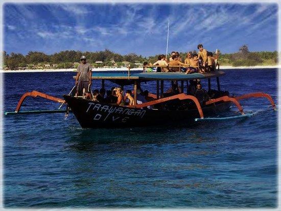 Trawangan Dive Resort : Diving trips