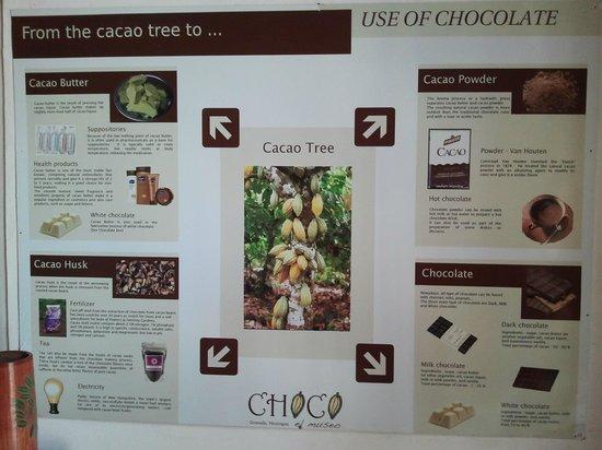 ChocoMuseo : Informacion