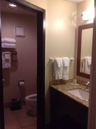 Comfort Inn Ship Creek: Bathroom