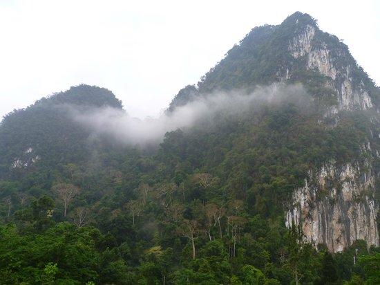 The Cliff & River Jungle Resort: Скала перед отелем