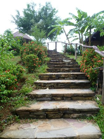 The Cliff & River Jungle Resort: Дорожка к бунгало