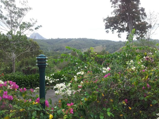 Cooroy Country Cottages: The view from our Cooroora Cottage