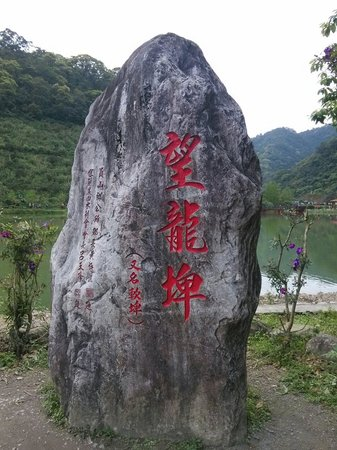 Wanglongbi