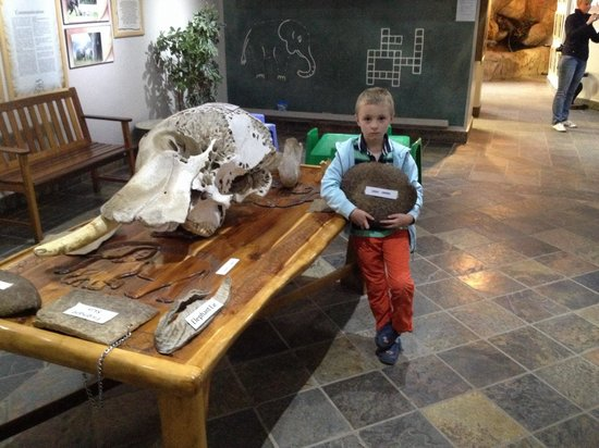 Knysna Elephant Park Lodge : Education center