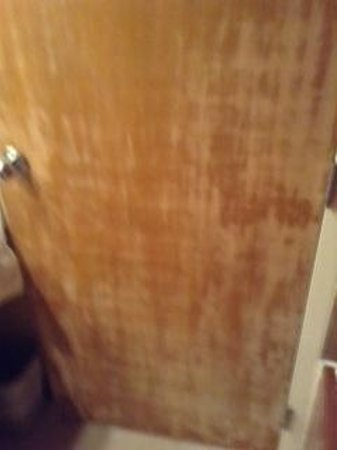The Morgan at San Simeon: Bathroom door