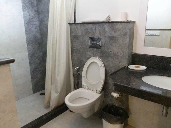 Devraj Niwas (Stay Well Planted) : bathroom with walk in shower