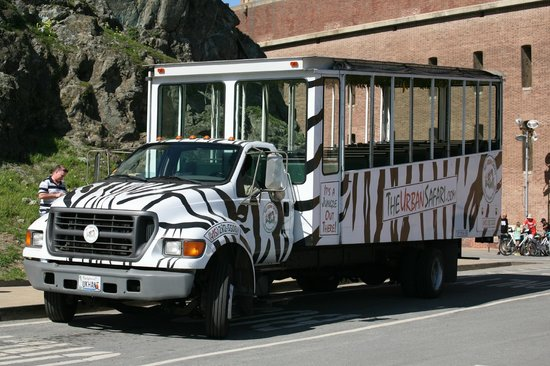 The Urban Safari : The Beautiful Tour Bus!