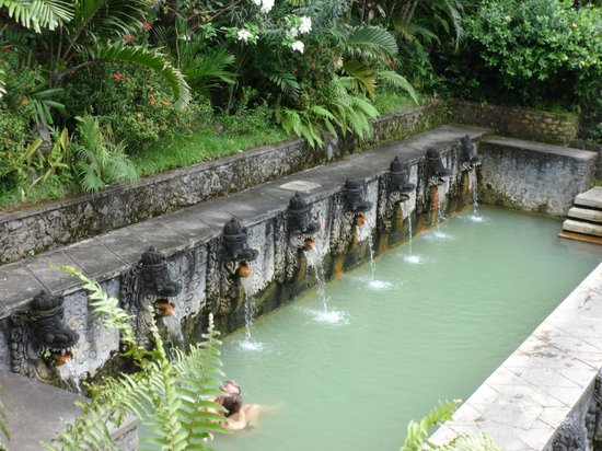 Grya Sari - the Bali Hot Springs Hotel: Hot Springs across street from retreat