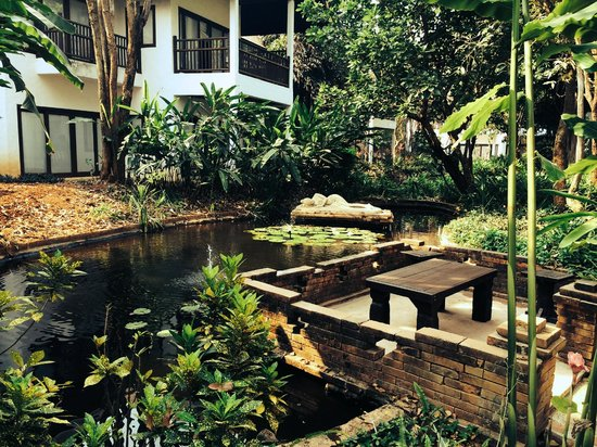 Beautiful lush gardens and ponds, with fish and frogs !