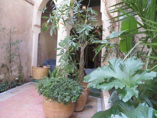 El Fenn : entrance to room 14