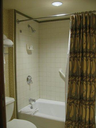 Disney's Grand Californian Hotel & Spa: バスルーム