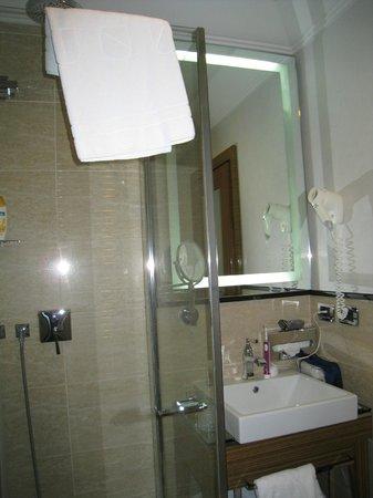 UNA Hotel Roma: Shower