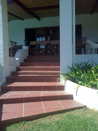 Orange Grove Farm: Stairway from lawn to stoep